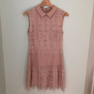 Pink Lace Collared Dress